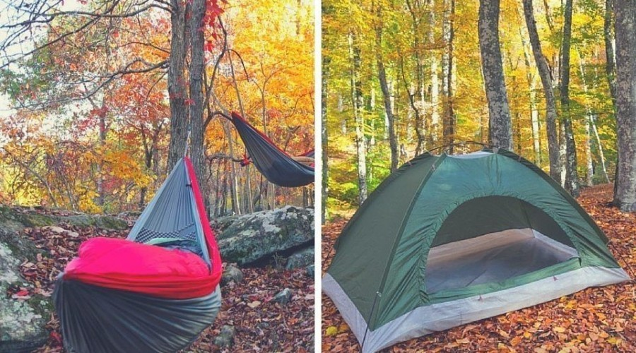 Hammock vs. Tent: Which One Should You Choose?
